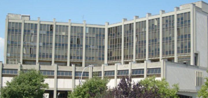 Tribunale di Benevento: riconosciuto il diritto al trattamento A.B.A. dell'autismo