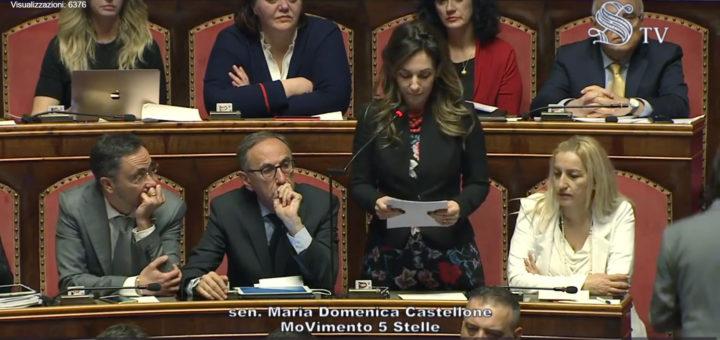 Autismo: mozione al Senato, On. Maria Domenica Castellone (M5S)